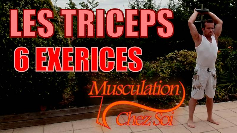 Exercices pour se muscler les triceps