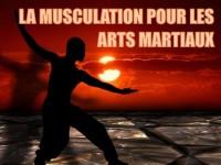 Arts martiaux et musculation