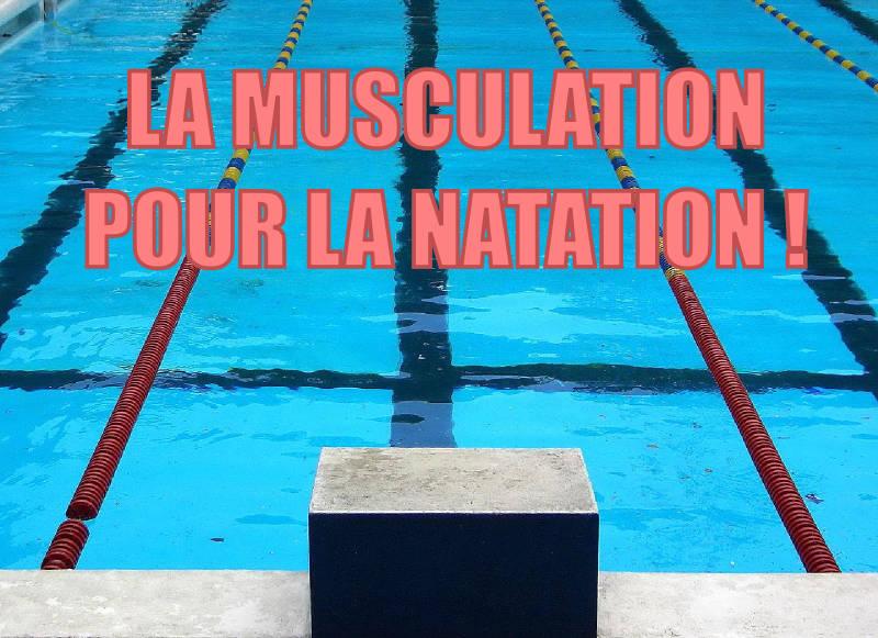 La musculation pour la natation
